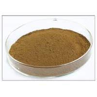 Oleuropein 20% Plant Extract Powder Brown Color Olive Leaf Extraction