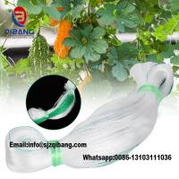 Buy cheap high quality virgin Agriculture Net ,Vegetable Net, Cucumber Net Plastic netting from wholesalers