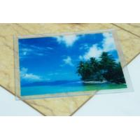 Wholesale Non Toxic PVC Place Mats With Customized Printed , Coffee Cup Coaster from china suppliers