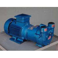 Quality 2BV-2061 series Water Ring Vacuum Pump for sale
