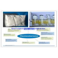 Wholesale Raw Material Testosterone Steroid Hormone Prop Testosterone Propionate For Muscle Gain from china suppliers