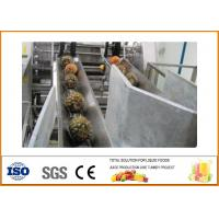 Wholesale Turnkey Pineapple juice Processing Line 10T/H Capacity CFM-B-02-10T from china suppliers