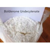 sample free Body Supplyment Muscle building Steroids Boldenone undecylenate /