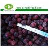 Buy cheap Frozen Blackberry from wholesalers