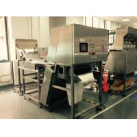 Wholesale CCD Sensor Belt Colour Sorter Machine For Monocrystalline Silicon , Coal from china suppliers