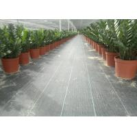 Wholesale Geosynthetic Fabric PP 130g Black Color 1m Width Weed Barrier For Anti Grass from china suppliers