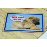 Wholesale Animal's Logo Custom Printed Mats Anti Fatigue Plastic Place Mat from china suppliers