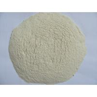 Wholesale pure white dehydrated garlic powder from china suppliers