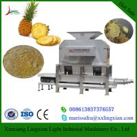 Wholesale Pineapple processing plants and Machines Juice Production how to produce juice from china suppliers