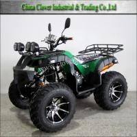 China 250CC Hunting ATV with Double Alloy Exhaust Pipe for Sale on sale