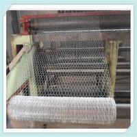 1/2 3/4 5/8 small hole chicken wire mesh/hexagonal wire mesh