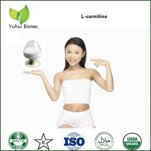 China l carnitine,l carnitine powder,l-carnitine,541-15-1,cas no.: 541-15-1,acetyl l-carnitine on sale