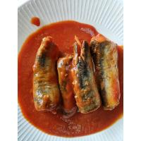 Wholesale Best sardines in tomato sauce 50X155g from china suppliers