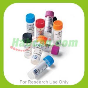 http://versicherung-continentale.de/book.php?q=view-nanocrystalline-tio2-for-photocatalysis-2004.html