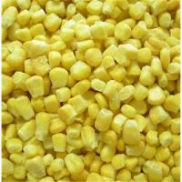 Wholesale IQF sweet corn from china suppliers