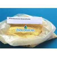 Wholesale Natural Anabolic Steroid Trenbolone Enanthate Cycle Trenbolone Steroids Powder In Medicine from china suppliers