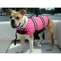 Wholesale Dog Life jacket from china suppliers