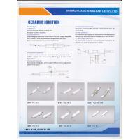 China ceramic elctrodes for gas water heaters;gas ovens;dryers on sale