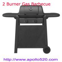 Quality 2 Burner Gas Barbecue Grill for sale