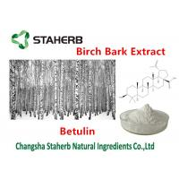 Buy cheap Medical - Grade Birch Bark Extract , Plant Extract Powder 98% Betulin from wholesalers