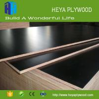Wholesale Laminate 9mm 12mm 15mm 18mm plywood chinese wholesale companies from china suppliers