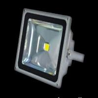 Wholesale 80W Halogen Low Voltage AC85 - 265V Silver Outdoor Led Flood Light Bulbs With 50000 Hours from china suppliers