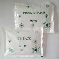 Wholesale PE ice pack for keeping food fresh in various sizes from china suppliers