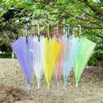 Wholesale EVA Long Handle Rain Sun Clear Plastic Dome Umbrella Rainproof Wedding Photo from china suppliers