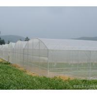 Quality Fiberglass mosquito netting/insect screen for window and door for sale