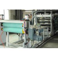 Wholesale Single Layer Multilayer Sheet Co Extrusion Line High Intensity Temperature Resistant from china suppliers