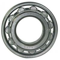 Wholesale 100mm Bore Cylindrical Roller Bearing NU 420 / NU 420 M Single Row 250mm from china suppliers