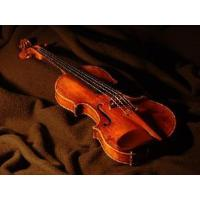 China Student Model Violin on sale
