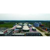 Wholesale Pure Straw Biogas Septic Tank Natural Gas Cellulose Hydrolysis Process For Vehicle from china suppliers