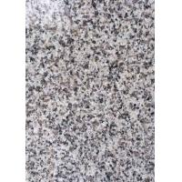 Wholesale Light Grey / White Large Granite Floor Tiles , G623 Polished Granite Stone Tiles from china suppliers