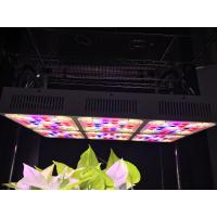 Wholesale Aluminum 570W Full Spectrum LED Grow Lights CREE COB With CE RoHS Approval from china suppliers