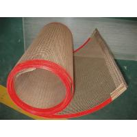 China ptfe teflon coated fiberglass mesh conveyor belt/ concrete reinforcing mesh with high quality and best  price on sale