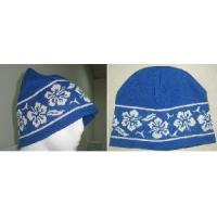 Wholesale Knitted Hat (SFY-H2-04) from china suppliers