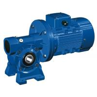 Wholesale High Speed Motovario NMRV 040 Worm Gear Reducer / Hollow Shaft Gearbox from china suppliers