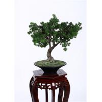 Wholesale Hand Crafted Faux Indoor Pine Tree Minimal Care Beautiful Artificial Arrangement from china suppliers