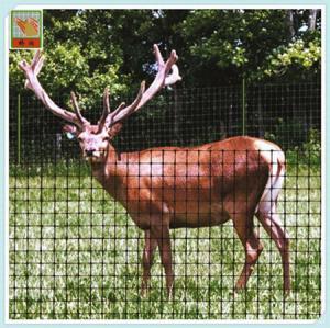 Buy cheap Deer Fence Netting/ Deer Fence/  PP/  Mesh 5CM*5CM/ Black/ Length 2M/ Protection Netting from Wholesalers