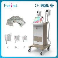 China Best Cryolipolysis (Beijing Manufacturer Direct Sale / After Sale Service Guaranteed) on sale