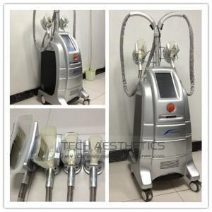 China Body Vibration Fat Freezing Reduce Cryotherapy Beauty Machines Etg50-4s on sale