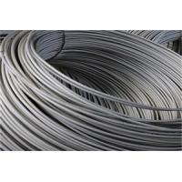 Wholesale 0.6mm - 1mm Stainless Steel Wire For Valve Sprayer And Valve Spring from china suppliers