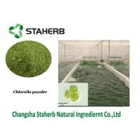 Wholesale Chlorella Vegetable Extract Powder , Protein Green Algae Powder Anti - Inflammatory from china suppliers