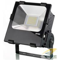 Wholesale 230V IP65 COB Cool White High Lumens 100 Watt LED Flood Light Replacing 250W HPS from china suppliers