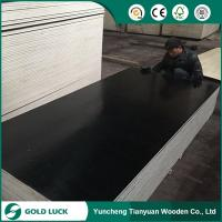 Wholesale 1220x2440x18mm Poplar Core, WBP Glue, Film Faced Plywood for Construction from china suppliers