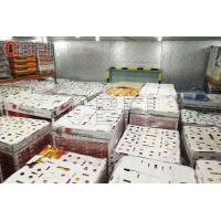 Wholesale Low Temperature Big Cold Room Project Cheese Frozen Food Storage Cold Room Freezer from china suppliers