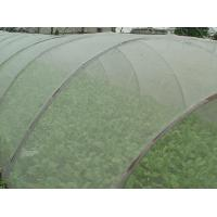 Wholesale Green House Using Anti-insect screen 40x25 mesh,PE Plant Anti Insect Net,Mosqutio Screen from china suppliers