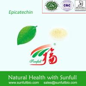 China Green Tea Extract, High purity EC,Epicatechin on sale