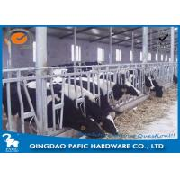 China Livestock Farm Locking Feed Barriers / Steel Galvanized Cattle Headlock Plan on sale